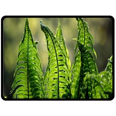 Fern Ferns Green Nature Foliage Double Sided Fleece Blanket (Large)
