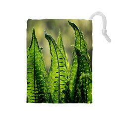 Fern Ferns Green Nature Foliage Drawstring Pouches (Large)