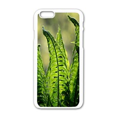 Fern Ferns Green Nature Foliage Apple iPhone 6/6S White Enamel Case