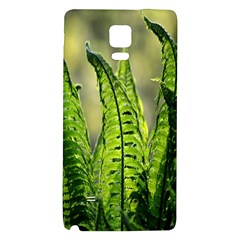 Fern Ferns Green Nature Foliage Galaxy Note 4 Back Case