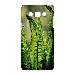 Fern Ferns Green Nature Foliage Samsung Galaxy A5 Hardshell Case