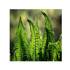 Fern Ferns Green Nature Foliage Small Satin Scarf (square)