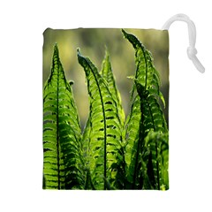 Fern Ferns Green Nature Foliage Drawstring Pouches (extra Large)