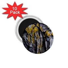 Grey Yellow Stone 1.75  Magnets (10 pack)