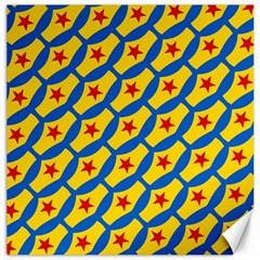 Images Album Heart Frame Star Yellow Blue Red Canvas 20  x 20