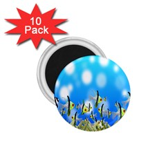 Pisces Underwater World Fairy Tale 1.75  Magnets (10 pack)