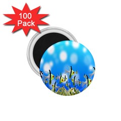Pisces Underwater World Fairy Tale 1.75  Magnets (100 pack)