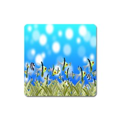 Pisces Underwater World Fairy Tale Square Magnet