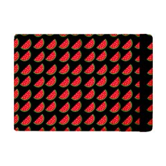 Watermelon iPad Mini 2 Flip Cases