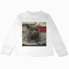 British Shorthair Grey Kids Long Sleeve T-Shirts