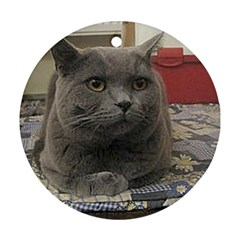 British Shorthair Grey Round Ornament (Two Sides)
