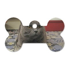 British Shorthair Grey Dog Tag Bone (One Side)