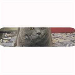 British Shorthair Grey Large Bar Mats