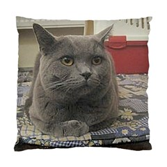 British Shorthair Grey Standard Cushion Case (One Side)