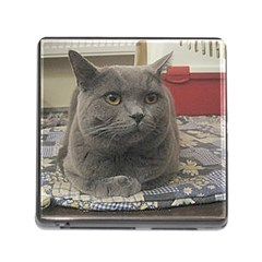 British Shorthair Grey Memory Card Reader (Square)