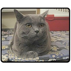 British Shorthair Grey Fleece Blanket (Medium)