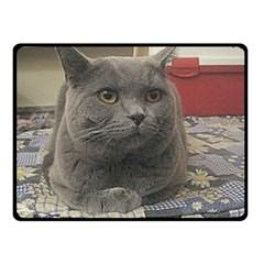 British Shorthair Grey Fleece Blanket (Small)