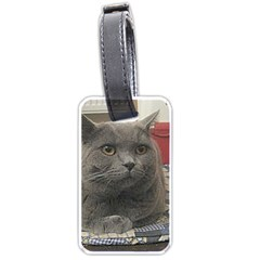 British Shorthair Grey Luggage Tags (One Side)