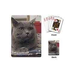 British Shorthair Grey Playing Cards (Mini)