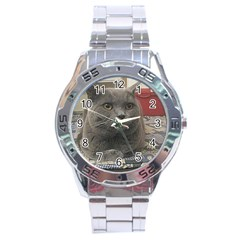 British Shorthair Grey Stainless Steel Analogue Watch