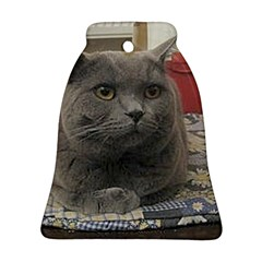 British Shorthair Grey Bell Ornament (Two Sides)