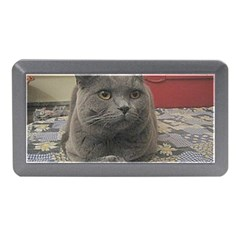 British Shorthair Grey Memory Card Reader (Mini)
