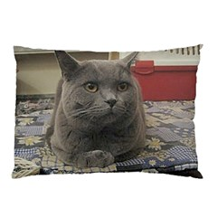 British Shorthair Grey Pillow Case (Two Sides)