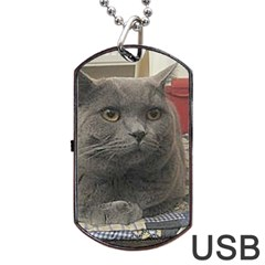 British Shorthair Grey Dog Tag USB Flash (One Side)