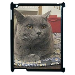 British Shorthair Grey Apple iPad 2 Case (Black)