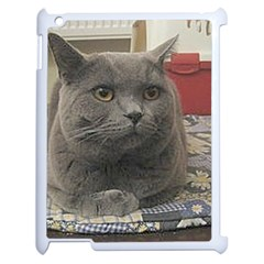 British Shorthair Grey Apple iPad 2 Case (White)