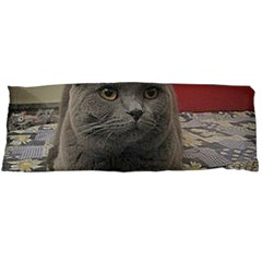 British Shorthair Grey Body Pillow Case (Dakimakura)