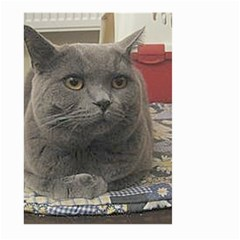 British Shorthair Grey Large Garden Flag (Two Sides)