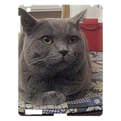 British Shorthair Grey Apple iPad 3/4 Hardshell Case