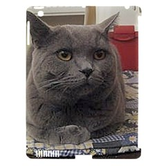 British Shorthair Grey Apple iPad 3/4 Hardshell Case (Compatible with Smart Cover)