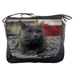 British Shorthair Grey Messenger Bags