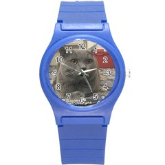 British Shorthair Grey Round Plastic Sport Watch (S)