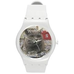 British Shorthair Grey Round Plastic Sport Watch (M)