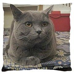 British Shorthair Grey Large Cushion Case (Two Sides)