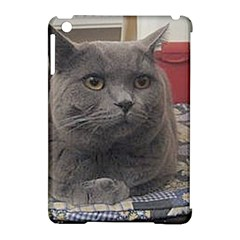 British Shorthair Grey Apple iPad Mini Hardshell Case (Compatible with Smart Cover)