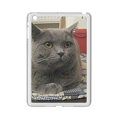British Shorthair Grey iPad Mini 2 Enamel Coated Cases