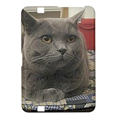 British Shorthair Grey Kindle Fire HD 8.9