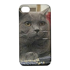 British Shorthair Grey Apple iPhone 4/4S Hardshell Case with Stand
