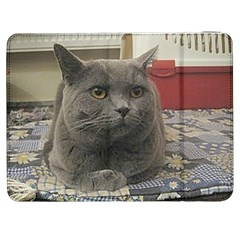 British Shorthair Grey Samsung Galaxy Tab 7  P1000 Flip Case