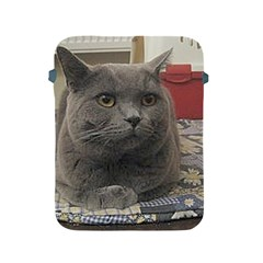 British Shorthair Grey Apple iPad 2/3/4 Protective Soft Cases