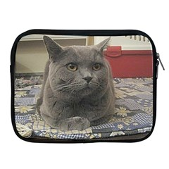 British Shorthair Grey Apple iPad 2/3/4 Zipper Cases