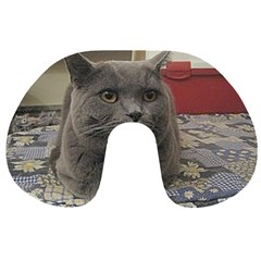 British Shorthair Grey Travel Neck Pillows