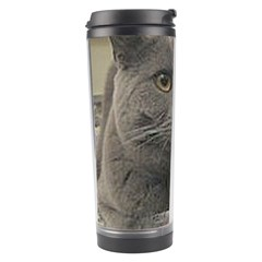 British Shorthair Grey Travel Tumbler