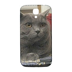 British Shorthair Grey Samsung Galaxy S4 I9500/I9505  Hardshell Back Case