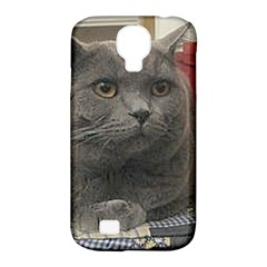 British Shorthair Grey Samsung Galaxy S4 Classic Hardshell Case (PC+Silicone)