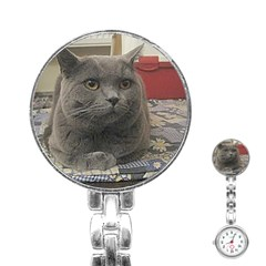 British Shorthair Grey Stainless Steel Nurses Watch